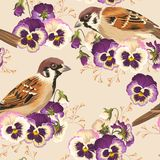 Seamless pansy and bird Stock Photography