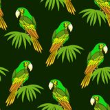 Seamless, Parrot and Leaves Stock Photos