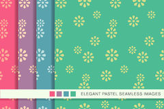 Seamless pastel background set cute daisy flower Royalty Free Stock Image