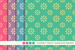 Seamless pastel background set vintage daisy flower Stock Photo
