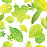 Seamless patern of green leaves. Seamless pattern of green leaves by watercolor paint stock illustration