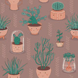 Seamless Patten With Cactuses And Succulent Plants Stock Images