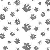 Seamless patter foot print dog. Footprint animal background, paw pet, wander puppy, vector graphic illustration Stock Photos