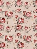 Seamless Pattern-002. Cultured rose style seamless pattern Stock Photography