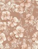 Seamless pattern 705 Stock Image