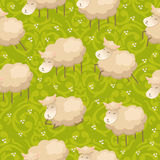Seamless pattern with adorable lambs Royalty Free Stock Images