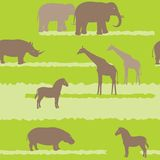 Seamless pattern with african animals Royalty Free Stock Photography
