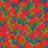 Seamless pattern all berries Stock Photos