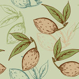 Seamless pattern with almond Royalty Free Stock Photos