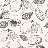Seamless pattern with almonds on white background Stock Photo
