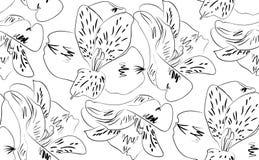 Seamless pattern alstroemeria flowers Royalty Free Stock Photo