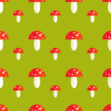 Seamless pattern with amanita mushrooms. Seamless pattern with toxic amanita mushrooms. Fly-agaric background Royalty Free Stock Photos