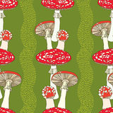Seamless pattern with amanita and stripes. Poisonous red-cup Mushroom Stock Photo