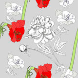 Seamless pattern  with amaryllis and flowers-01 Stock Image