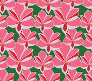 Seamless pattern amaryllis on green Royalty Free Stock Photography