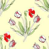 Seamless pattern with amaryllis and tulip Royalty Free Stock Photography