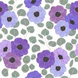 Seamless pattern with anemone flowers and silver dollar eucalyptus. Variation of different colors. Decorative holiday floral backg Royalty Free Stock Images