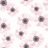 Seamless pattern with anemone in vintage watercolor style. Vector illustration royalty free illustration