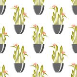 Seamless pattern with antique vases green plants background decorative pot design classic pottery container vector Stock Photography