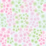 Seamless pattern with apple flowers Stock Photography