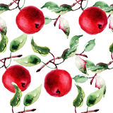Seamless pattern with apple. Watercolor illustration Royalty Free Stock Image