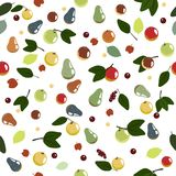 Seamless Pattern With Apples And Pears Royalty Free Stock Image