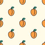 Seamless pattern with apricot. Vector illustration. Hand-drawn background Stock Photography