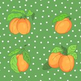 Seamless pattern with apricots Royalty Free Stock Photo