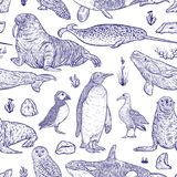 Seamless pattern with arctic animals. Narwhal, snowy owl, albatross, beluga whale, penguin, atlantic puffin, killer whale, walrus, seal and tundra plants and Stock Image
