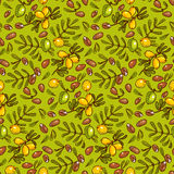 Seamless pattern Argan Oil Stock Photo