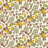 Seamless pattern Argan Oil Stock Photography