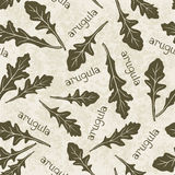 Seamless pattern with arugula. Hand-drawn floral background. Mo Royalty Free Stock Images