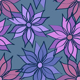 Seamless pattern of aster flowers Stock Photos