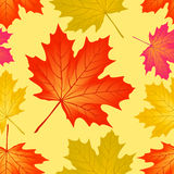 Seamless pattern autumn. Stock Photo