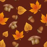 Seamless pattern - Autumn Stock Photos