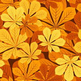 Seamless pattern with autumn chestnut leaves. Vect Stock Image