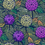 Seamless pattern with autumn chrysanthemums Stock Photo