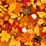 Seamless pattern with autumn colorful leaves. Vector illustration. Stock Photos