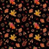 Seamless pattern autumn elements leaves cones acorns on black background stock illustration