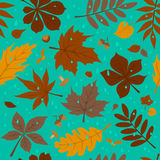 Seamless pattern with autumn fall leaves and rain drops on blue background Royalty Free Stock Photography