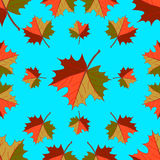 Seamless pattern - Autumn falling leaves Royalty Free Stock Photos
