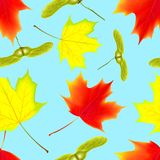 Seamless pattern with autumn maple falling leaves on isolated blue background. Seamless pattern with autumn falling maple leaves. Falling maple leaves. Vector Royalty Free Stock Photos