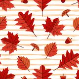 Seamless pattern of autumn floral multicolor. Seamless pattern of autumn floral with maple and oak leaves. Multicolor kids drawing style vector illustration Royalty Free Illustration