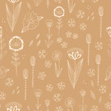 Seamless  pattern with autumn flowers, leaves and grass. Royalty Free Stock Image