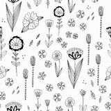 Seamless  pattern with autumn flowers, leaves and grass. Royalty Free Stock Photography