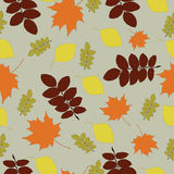 Seamless pattern with autumn leaf fall Royalty Free Stock Photo