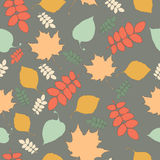 Seamless pattern with autumn leaf fall Royalty Free Stock Photos