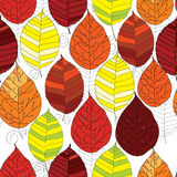 Seamless pattern autumn  leaf. Vector illustration of seamless pattern autumn  leaf with graphic on white background Royalty Free Stock Images