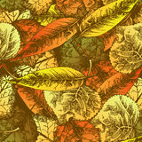 Seamless pattern with autumn leafs Stock Photos