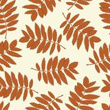 Seamless pattern with autumn leaves Royalty Free Stock Photos